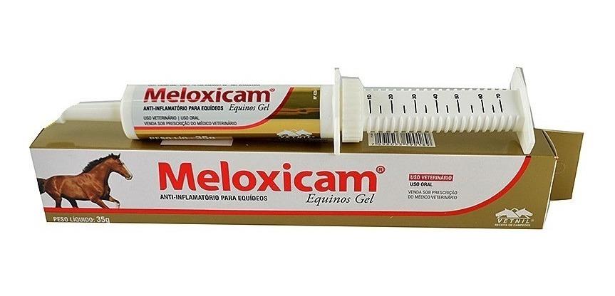 Anti-inflamatório Vetnil Meloxicam® Equinos Gel